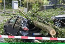 Does Car Insurance Cover Natural Disasters- Everything You Need To Know!